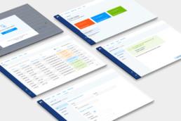 screenshots of metro master data management project