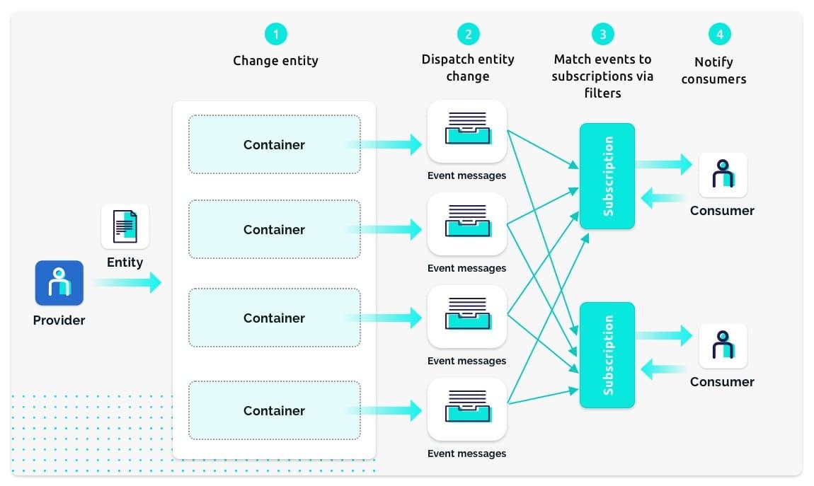The Data Integration Platform diagram - master data management
