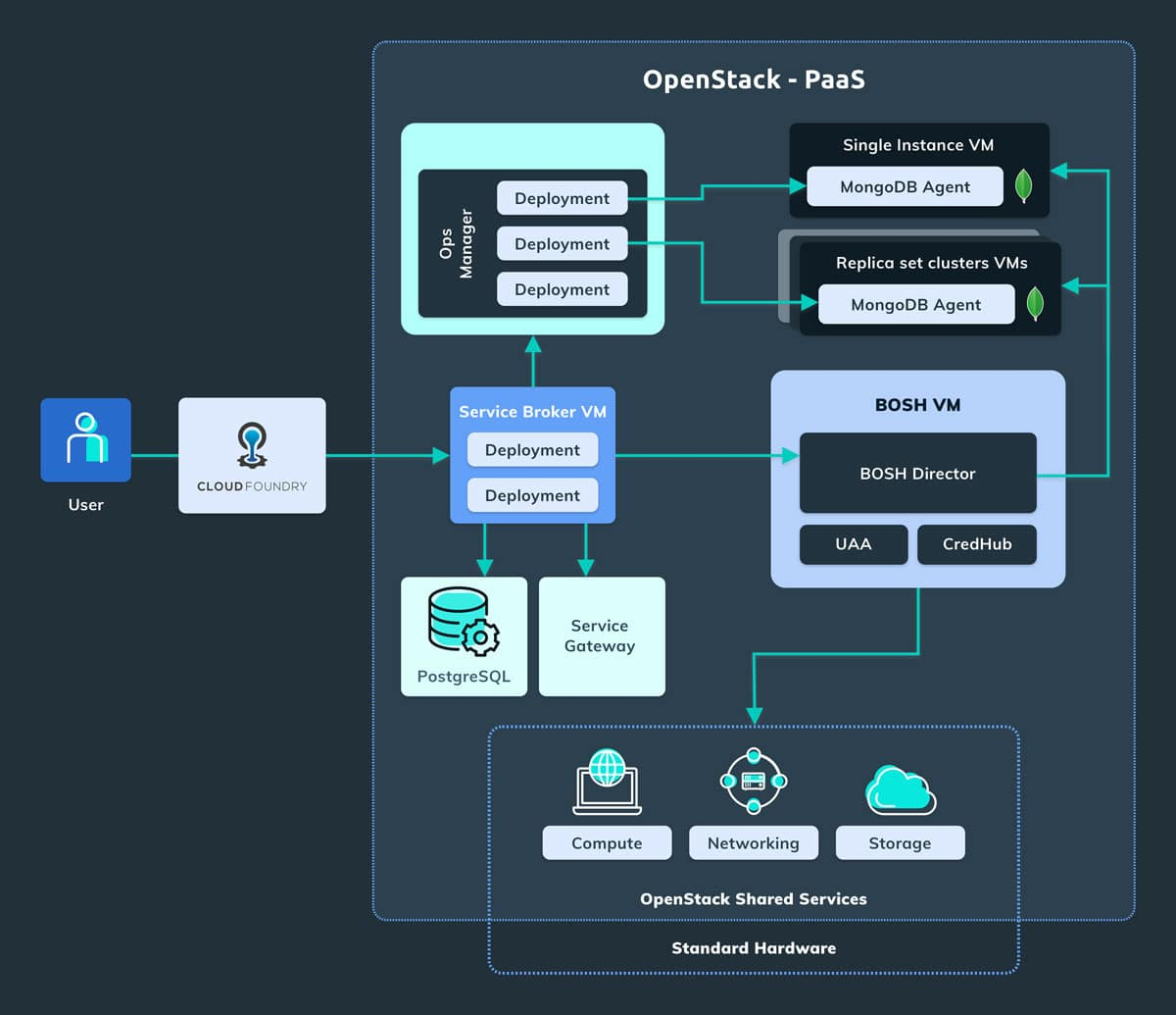 The Overall Architecture of our Proposed MongoDB as a Service